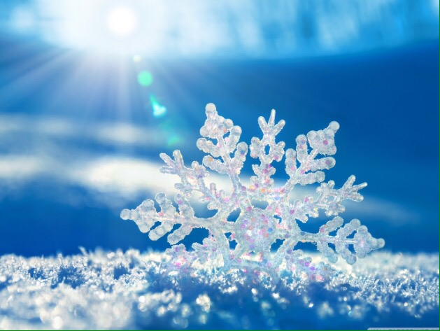 MS Snowflakes